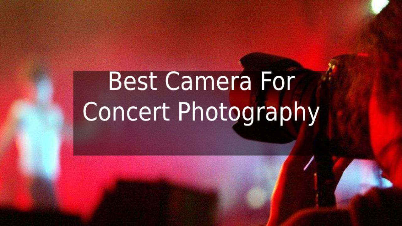 Best Camera For Concert Photography